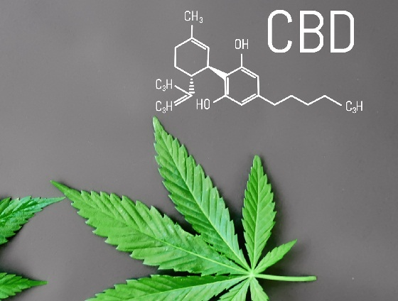 Why are Smokers Turning from Cigarettes to the Best CBD Vape