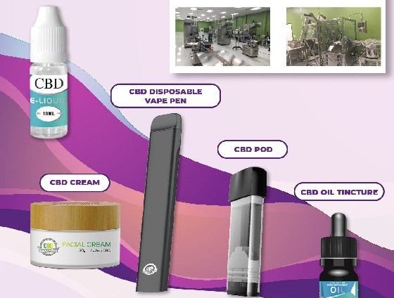 THE WHATS AND WHYS OF VAPING CBD