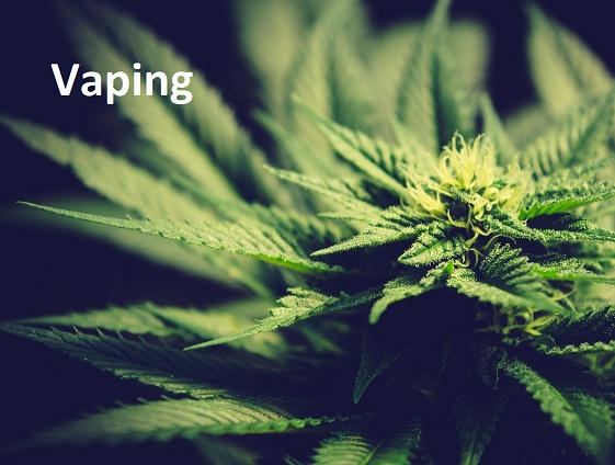 Vaping CBD Oil: What We Know and What We Do Not